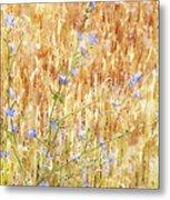 Chickory N Wheat W C Metal Print