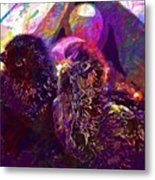 Chicks Hatched Fluffy Young Animal  Metal Print