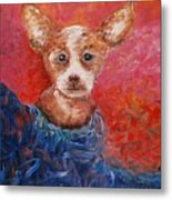 Chihuahua Blues Metal Print