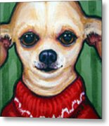 Chihuahua In Red Sweater - Boss Dog Metal Print