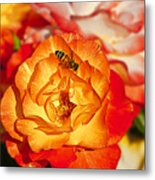 Chihuly Rose With Bee Metal Print