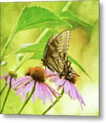 Child Of Sun And Summer Metal Print