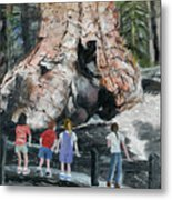 Children At Sequoia National Park Metal Print