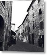 Chilling Out In Tuscany Metal Print