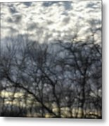 Chilly Morning Metal Print