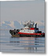 Chilly Waters Metal Print