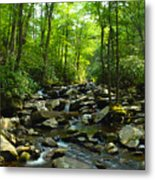 Chimney Tops Trail Metal Print