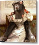 Chimp In Gown  Metal Print