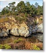 China Cove, Point Lobos Metal Print by Yair Karelic