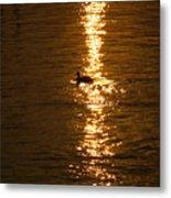 Chincoteague Bay Sunset Metal Print