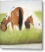 Chincoteague Ponies Metal Print