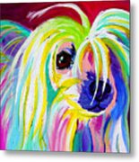 Chinese Crested - Fancy Pants Metal Print by Alicia VanNoy Call