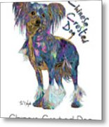 Chinese Crested Dog Pop Art Metal Print