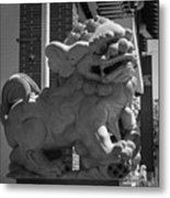 Chinese Guardian Male Lion B W Metal Print