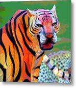 Chinese Tiger 2 Metal Print