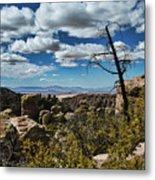 Chiricahua National Monument Metal Print