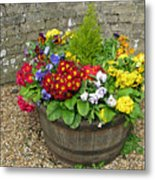 Chock Full Of Color Metal Print