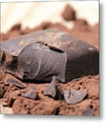 Chocolate Metal Print by Frank Tschakert