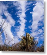 Cholla Blue Sky Metal Print