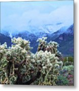 Cholla Cactus And Superstition Mountains Metal Print