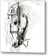 Chomping At Bit - Sketch1 Metal Print