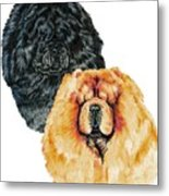 Chow Chows Metal Print