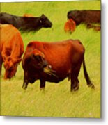 Chow Time Metal Print