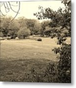 Christ In The Field Sepia Metal Print