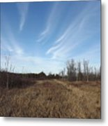 Christmas Day In The Country Metal Print