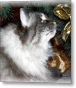 Christmas Kitty Metal Print