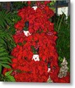 Christmas Poinsettia Display 002 Metal Print