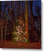 Christmas Tree In Forest Metal Print