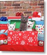 Christmas With Kittens Metal Print