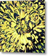 Chrysanthemum Pop Metal Print