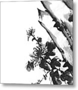 Chrysanthemum Stone 2 Metal Print