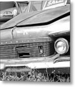 Roadside Imperials -  Bw Metal Print