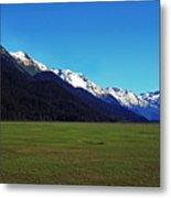Chugach Mountains Green Plain Metal Print