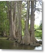 Cibolo Creek Metal Print