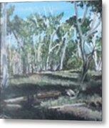 Cimmeron Grasslands Metal Print