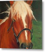 Cinnamon The Horse Metal Print