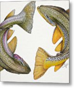 Circling Rainbow And Brown Trout Metal Print