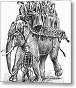 Circus: Elephant, C1901 Metal Print