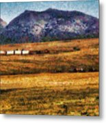 City - Arizona - Southwestern Cargo Train Metal Print