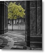 City Forest Metal Print
