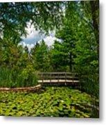 Clark Gardens Botanical Park Metal Print