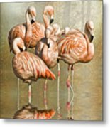 Cleaning Up Their Act. Metal Print
