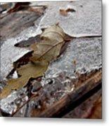 Clear Creek Greenway Three Metal Print