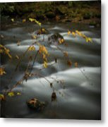 Clear Creek Metal Print