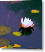Clear Reflections Lotus Metal Print