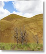 Clear Sky At Painted Hills Metal Print